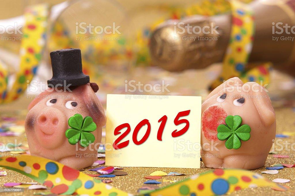 Novo ano 2015 - foto de acervo