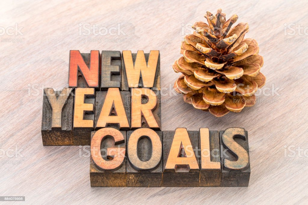 New Year goals word abstract in wood type stock photo