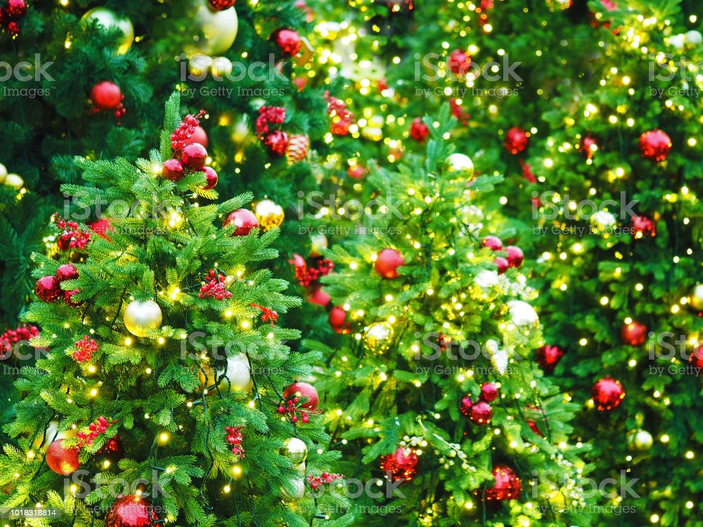 new year holiday or christmas green background christmas trees decorated with red and golden decorations