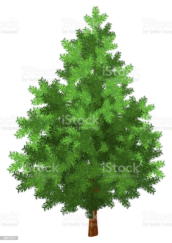 New year tree green isolated royalty-free stock photo