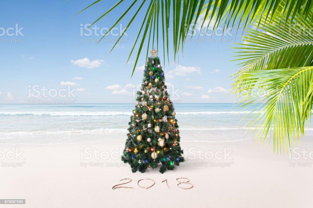 new year tropic stock photo
