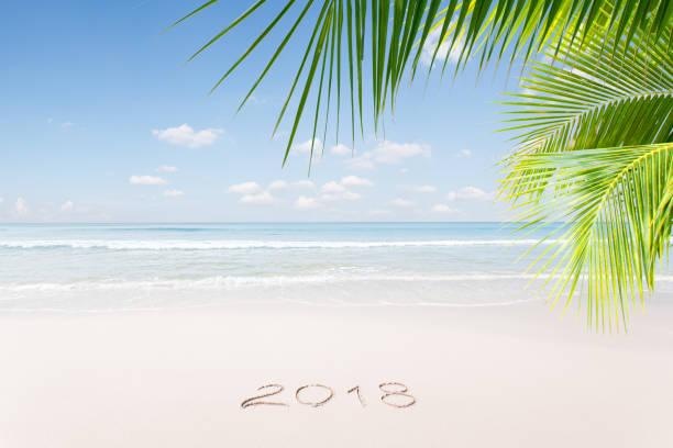 new year tropic