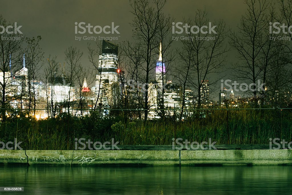 new york behind the forest stock photo