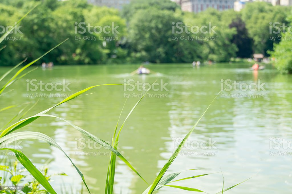 New York Blurry Rowers stock photo