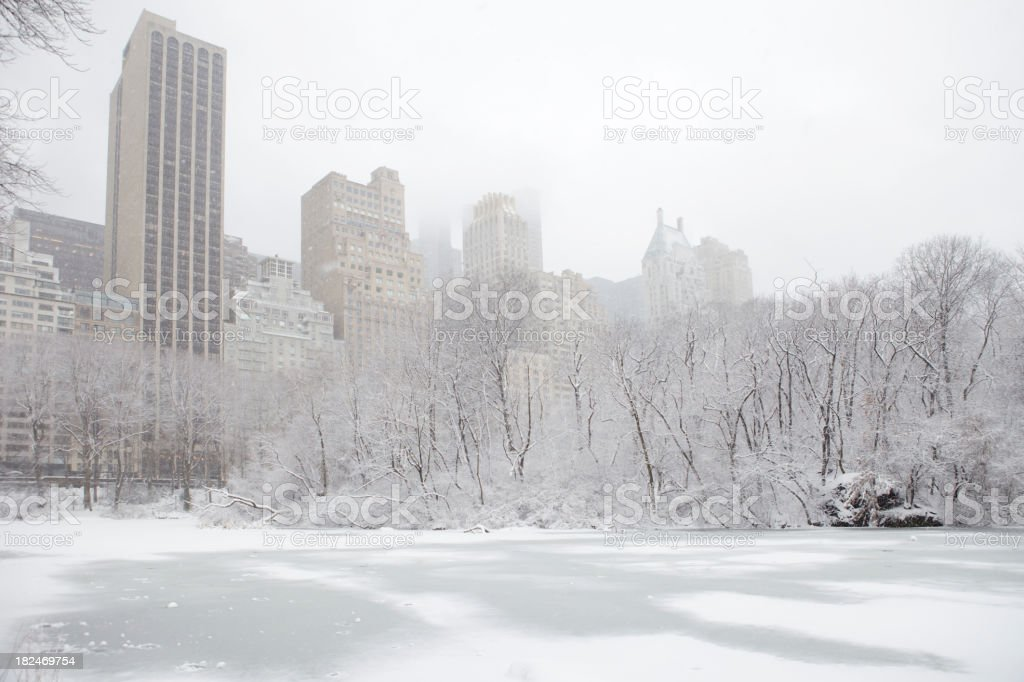 New York Central Park in winter, dusted with snow stock photo
