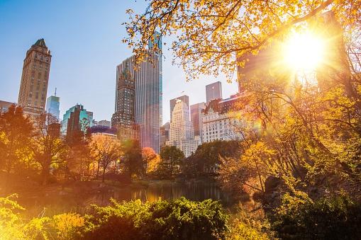 New York Central Park, United States of America. Sunny New York City.