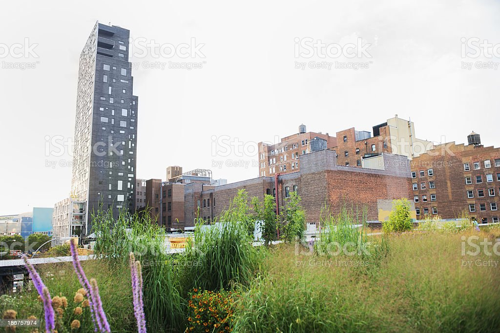 New York City High Line Park and Buildings stock photo