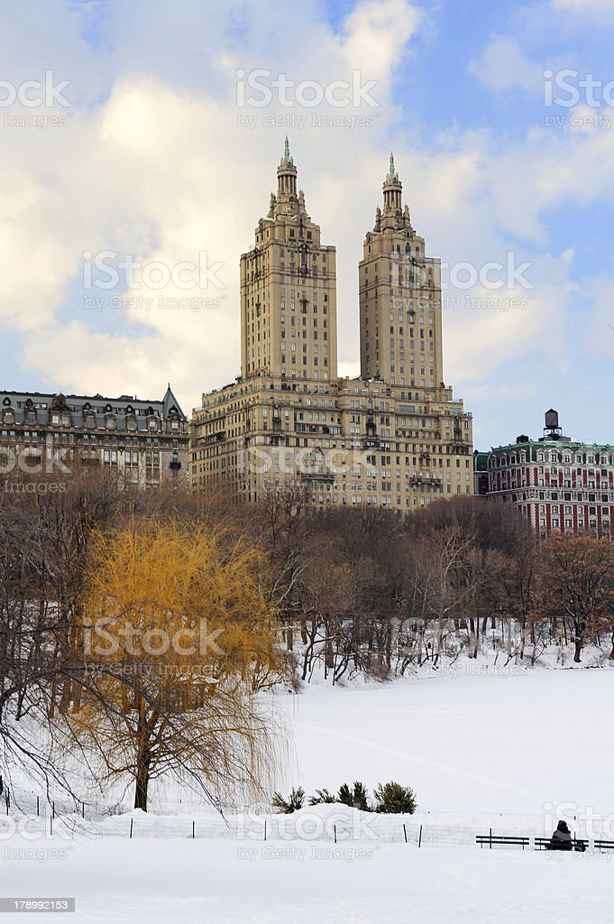 New York City Manhattan Central Park in winter royalty-free stock photo