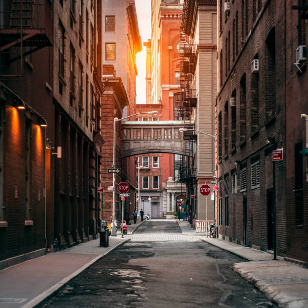 New York City street at sunset time in TriBeCa New York City street at sunset time. Old scenic street in TriBeCa district in Manhattan. alley stock pictures, royalty-free photos & images
