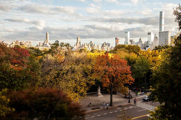 nowy jork, usa panoramę w central parku w jesieni. - central park manhattan zdjęcia i obrazy z banku zdjęć