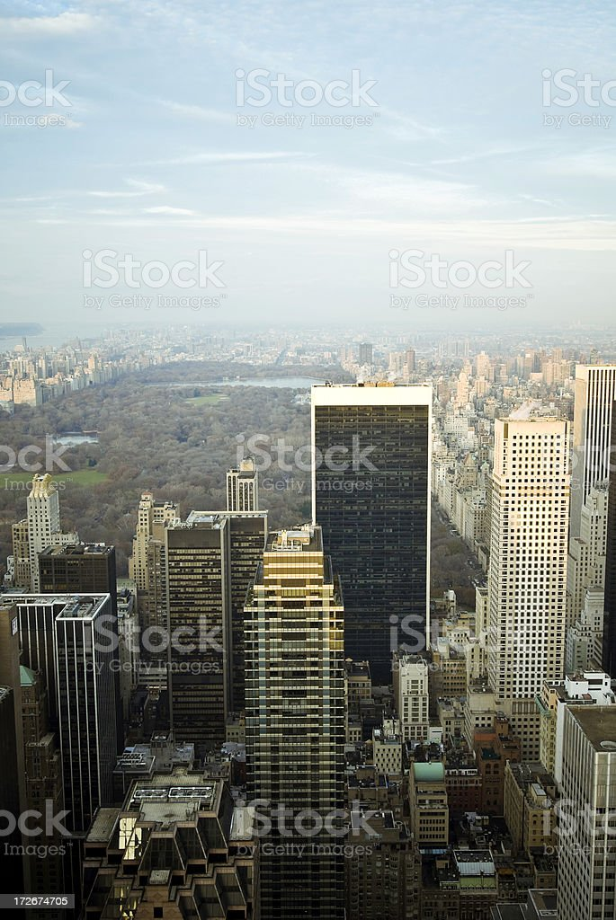 New York Cityscape with Central Park royalty-free stock photo