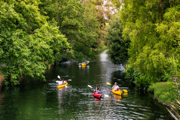 New Zealand, Christchurch 2018 DEC 22, New Zealand, Christchurch, People are kayaking on  the river in Botanic garden. avon colorado stock pictures, royalty-free photos & images