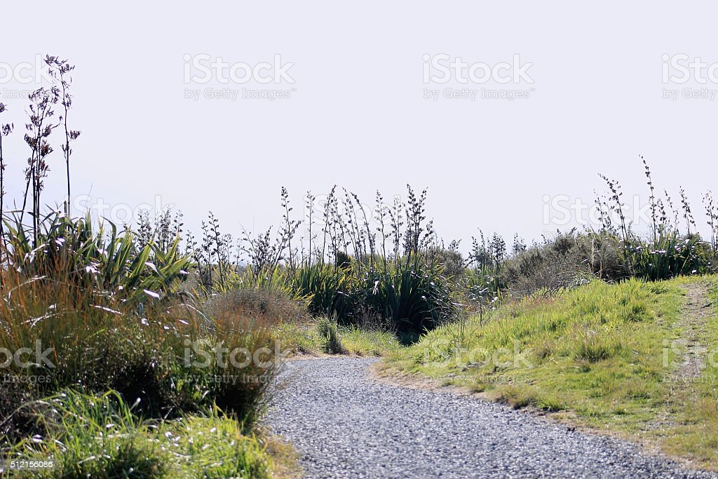 New Zealand Coastal pathway stock photo