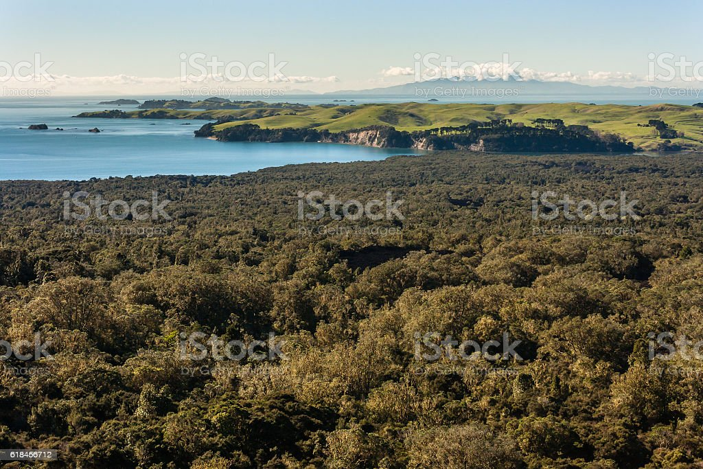 New Zealand coastline with tropical rainforest stock photo