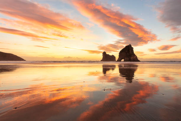 뉴질랜드 다채로운 겨울 일몰 - 태즈먼 해 뉴스 사진 이미지