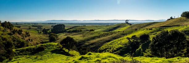 New Zealand Countryside Panoramic View stock photo