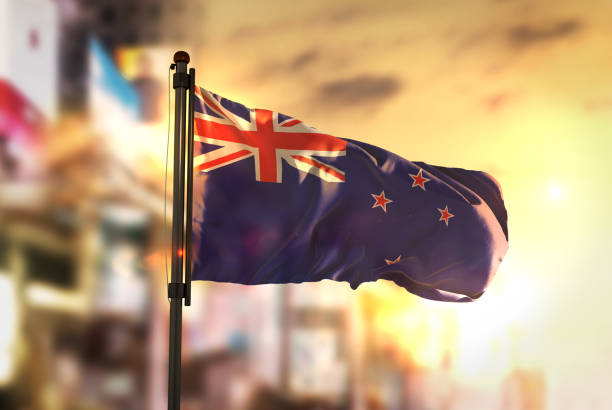 new zealand flag against city blurred background at sunrise backlight - new zealand flag stock photos and pictures