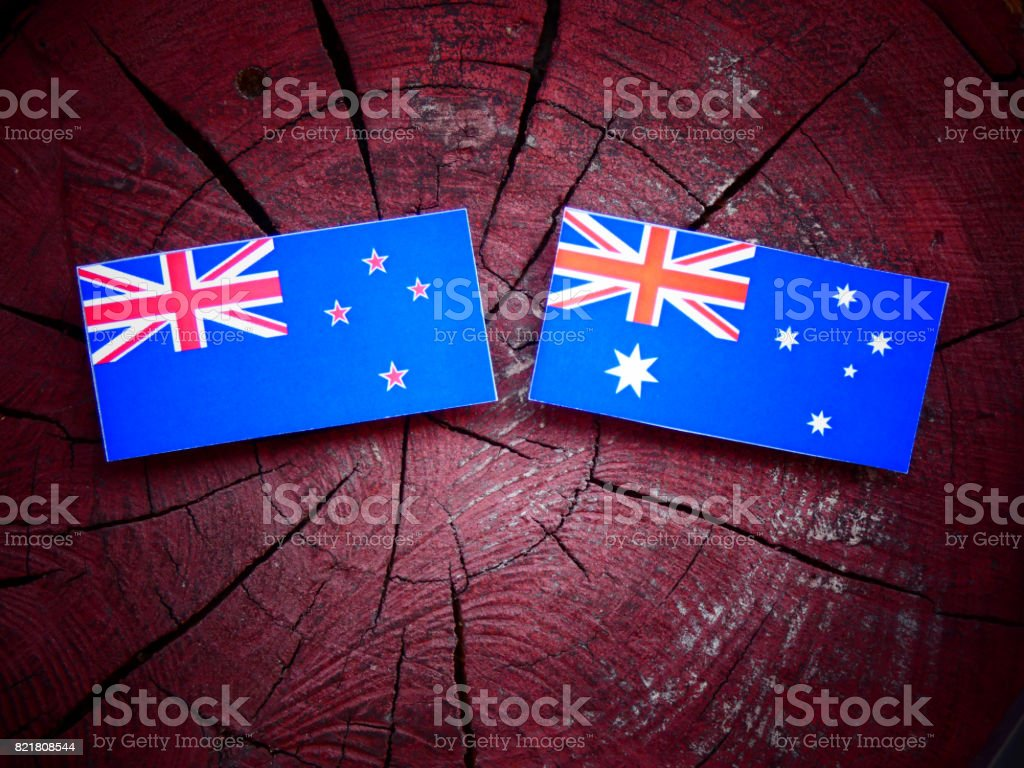 New Zealand flag with Australian flag on a tree stump isolated stock photo