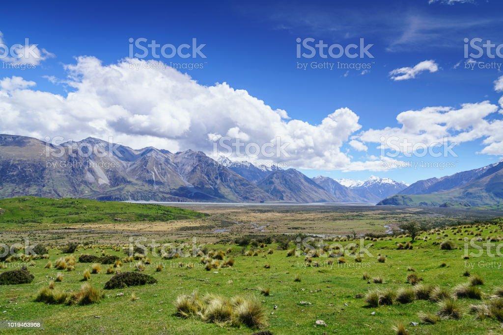 New Zealand Hakatere Conservation Nature Reserve Park stock photo