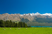 istock New Zealand mountains 489870490