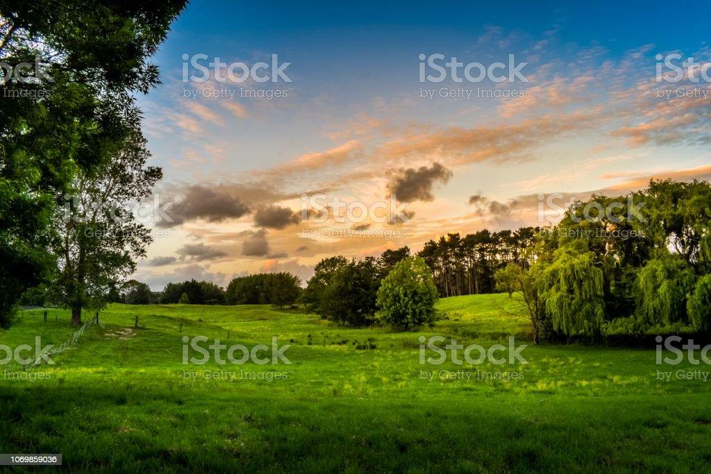 New Zealand rural farm setting at sunset stock photo