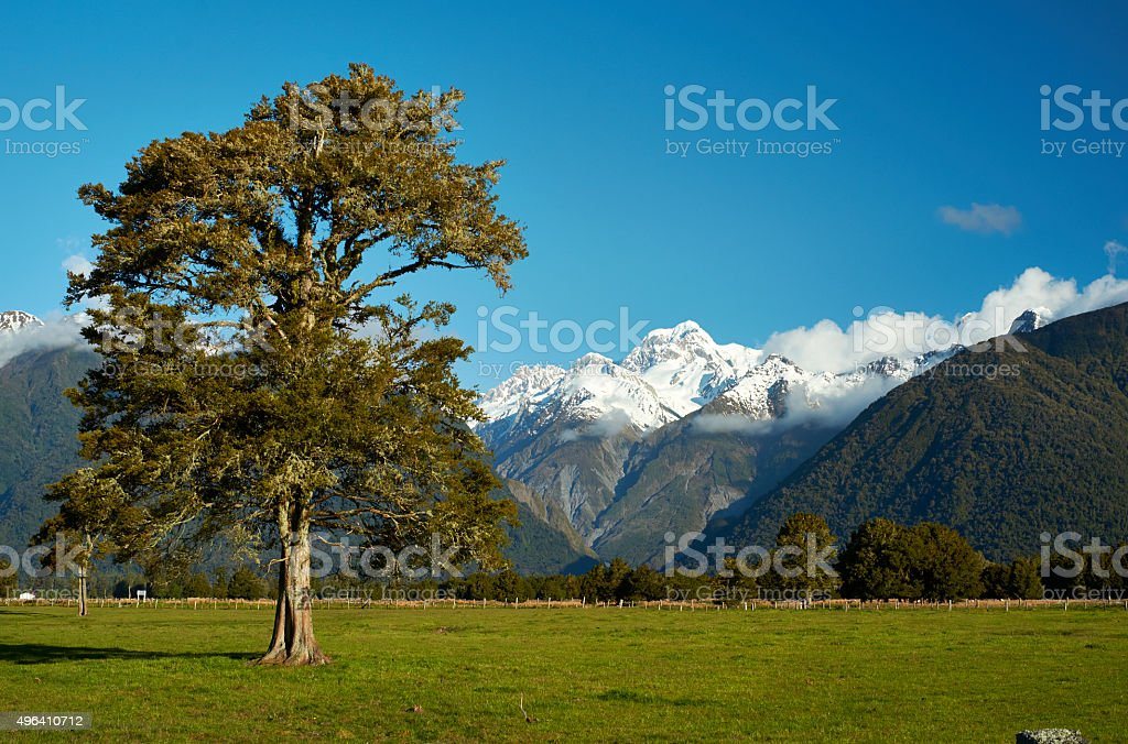 New Zealand's Southern Alps stock photo