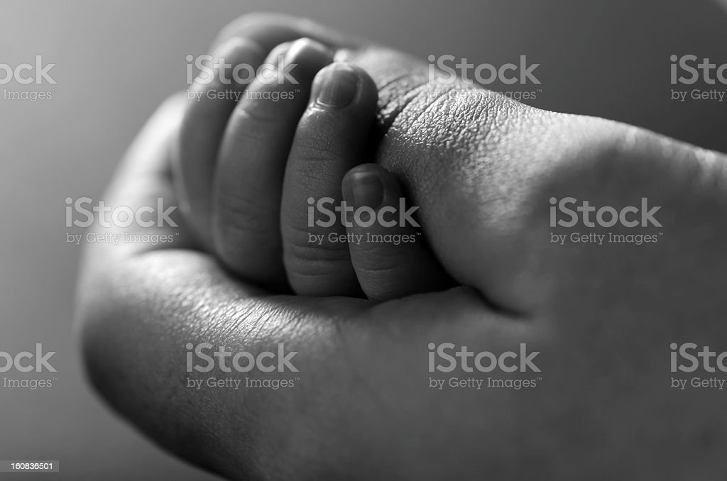 Newborn and mother hands stock photo