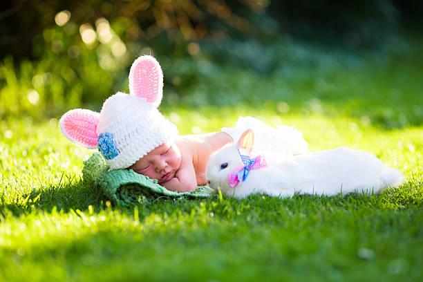 Newborn baby boy with easter bunny picture id499289426?b=1&k=6&m=499289426&s=612x612&w=0&h=ptpfbow6yvfdnv7eabxmne9o g257uvabacf0nrnl q=