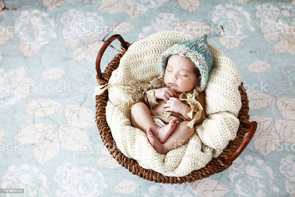 Newborn Baby Girl in Basket royalty-free stock photo