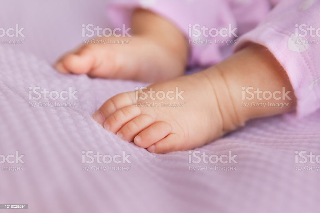 Newborn baby girl legs on lilac background, closeup of infant barefeet in a selective focus Newborn baby girl legs on lilac background, closeup of infant barefeet in a selective focus, maternity and babyhood concept - Image Baby - Human Age Stock Photo