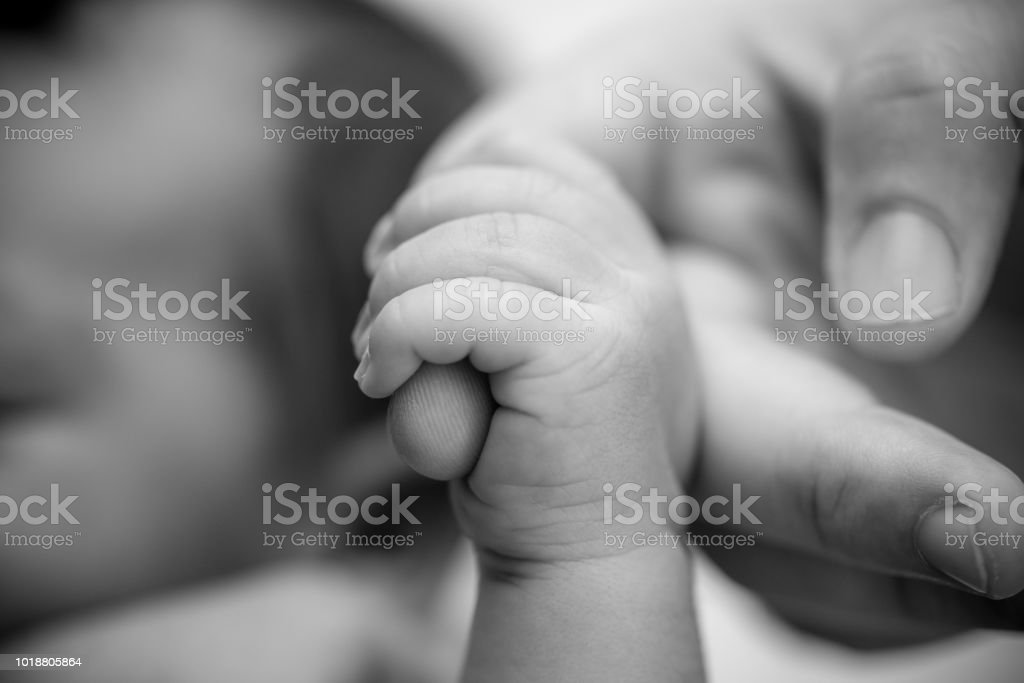 Newborn Baby Holding Finger Of Mother Father Happy Family And Baby Protection Concept Mom And Dad Holding The Hand Of Their Child Stock Photo Download Image Now Istock