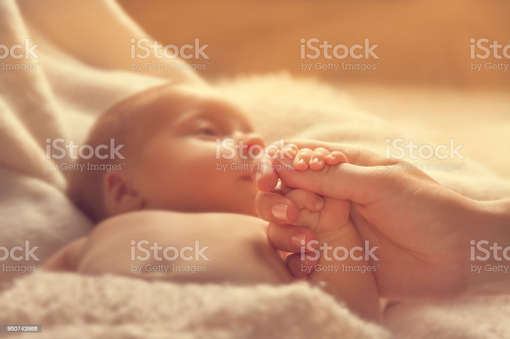 Newborn Baby Holding Mother Hand, New Born Child and Parent, Family Hands stock photo