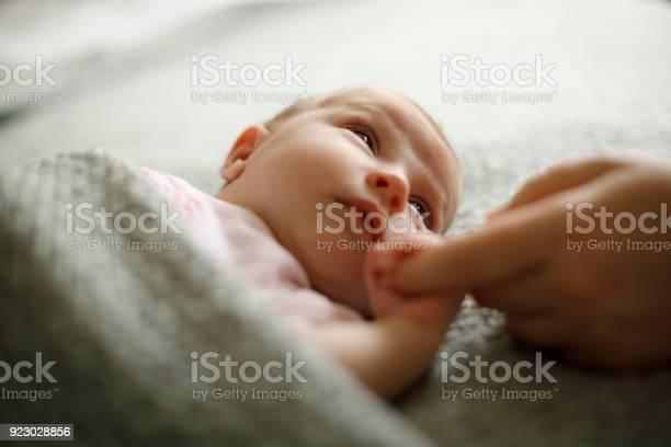 Newborn baby holding mothers hand picture id923028856?b=1&k=6&m=923028856&s=612x612&h=juptq2cjr5vgnorferbvnfaunltnyoy9lk uvnoddke=