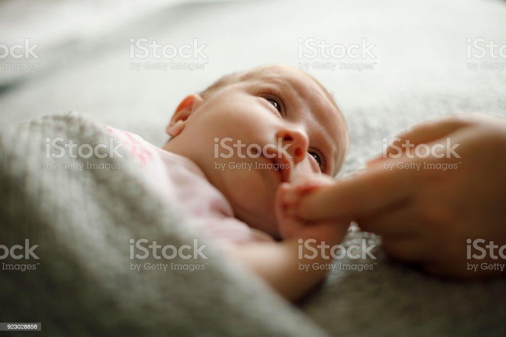 Recién nacido bebé sosteniendo la madre de la mano - foto de stock
