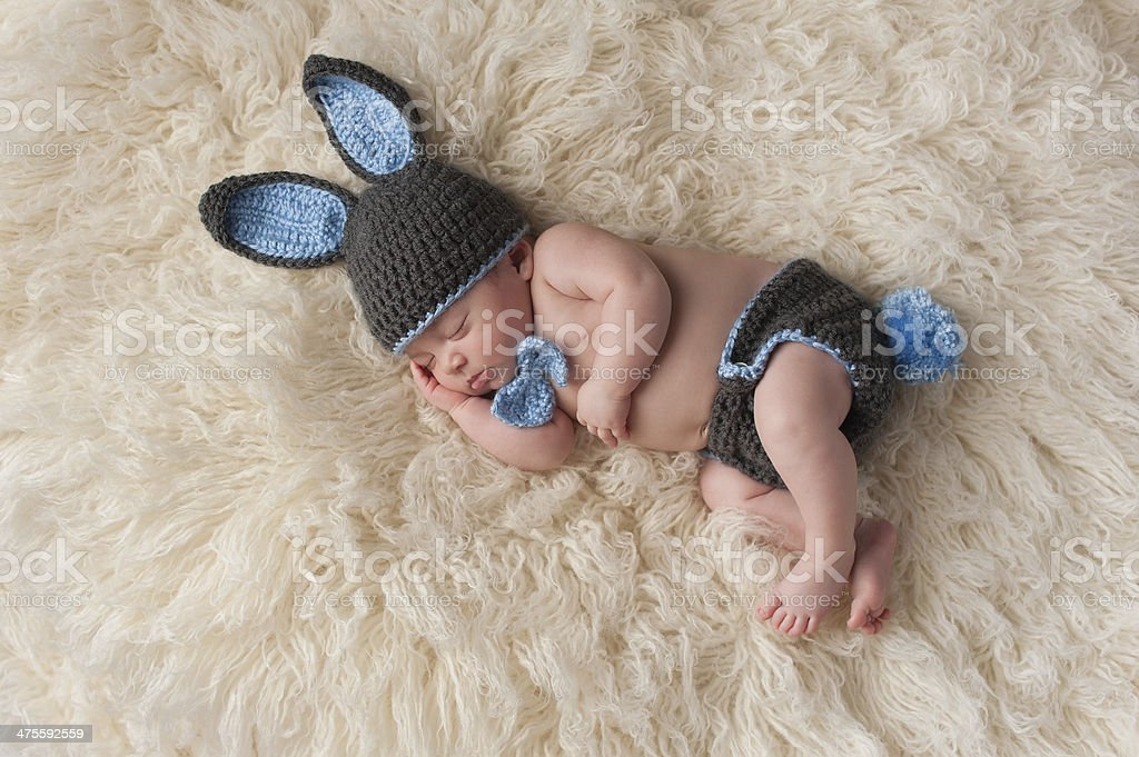 Newborn Baby in Bunny Rabbit Costume stock photo
