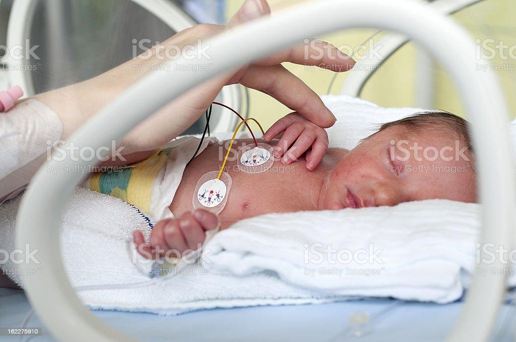 Newborn baby in incubator stock photo
