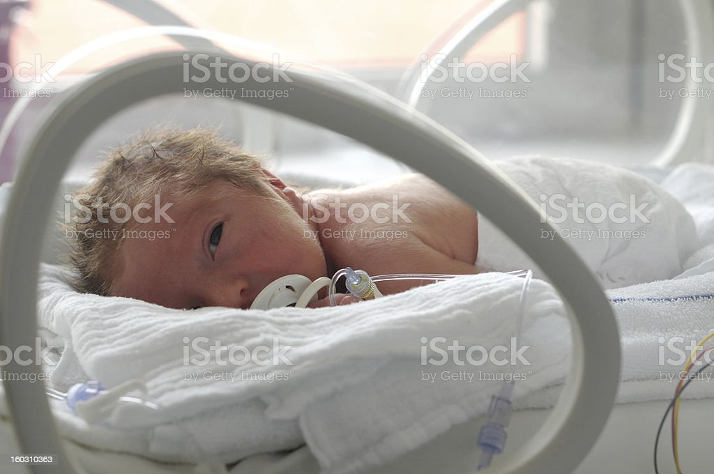 Newborn baby in incubator with a pacifier  stock photo