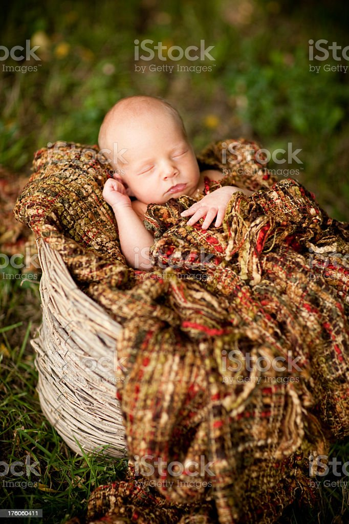 Newborn Baby Outside in Basket With Textured Blanket royalty-free stock photo