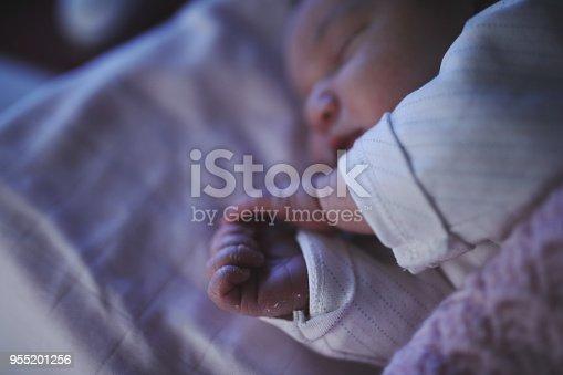 853843596 istock photo Newborn baby 955201256