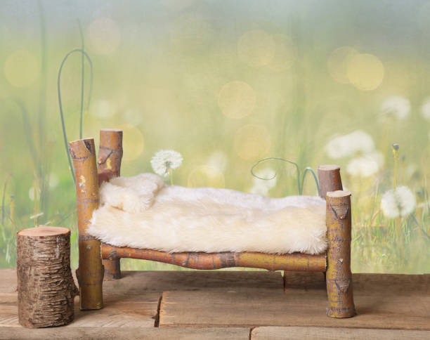 A newborn backdrop bed with a dandelion background. stock photo