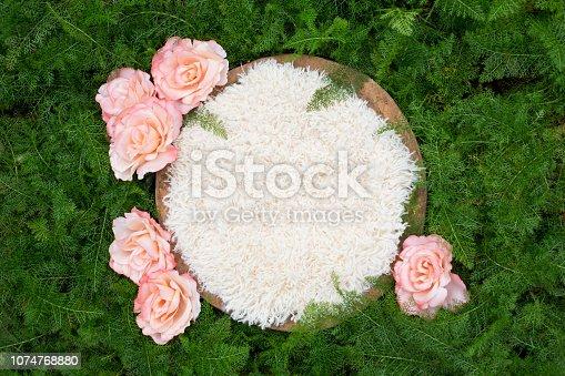 istock Newborn Background Roses and Greenery 1074768880