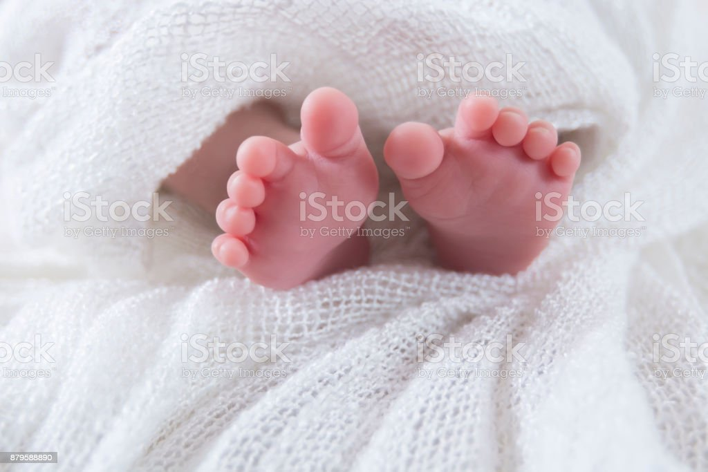 Newborn Feet stock photo