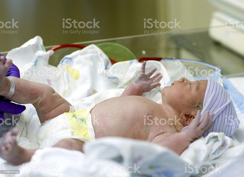 Newborn Infant royalty-free stock photo