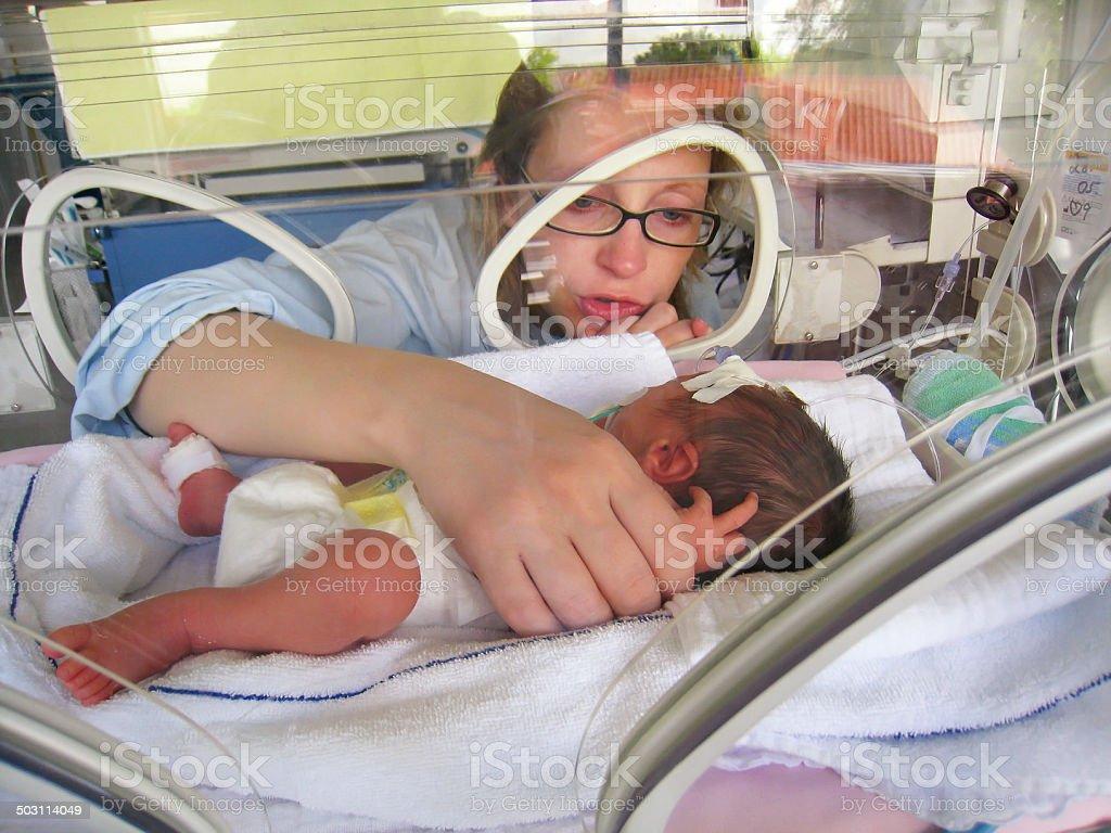 Newborn Premature in Incubator stock photo
