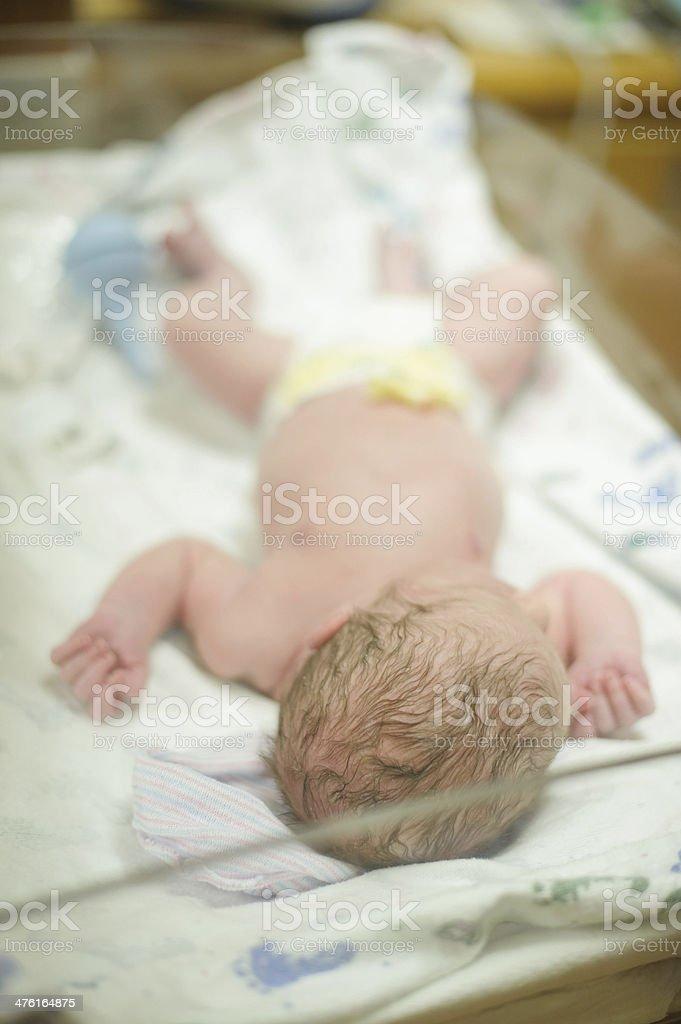 Newborn Sleeping in a Hospital Nursery royalty-free stock photo