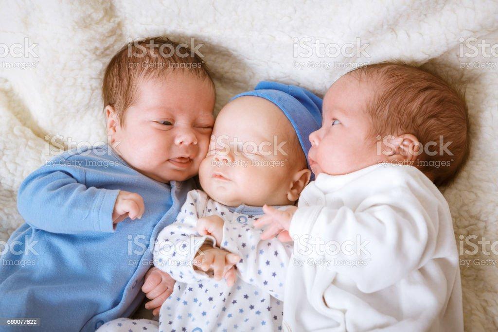 Newborn triplets boys stock photo