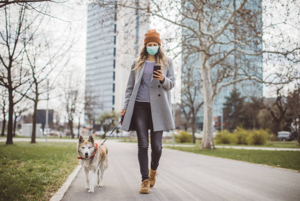 Newer alone when you have dog stock photo
