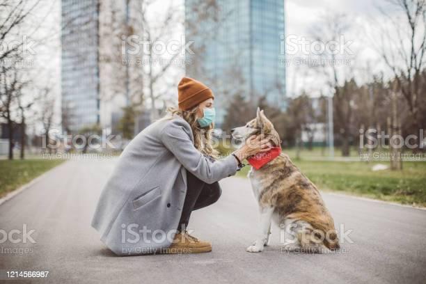 Newer alone when you have dog picture id1214566987?b=1&k=6&m=1214566987&s=612x612&h=q2avotgr2neyekjysu9lly6cksszjpokjskkuzkeu8i=