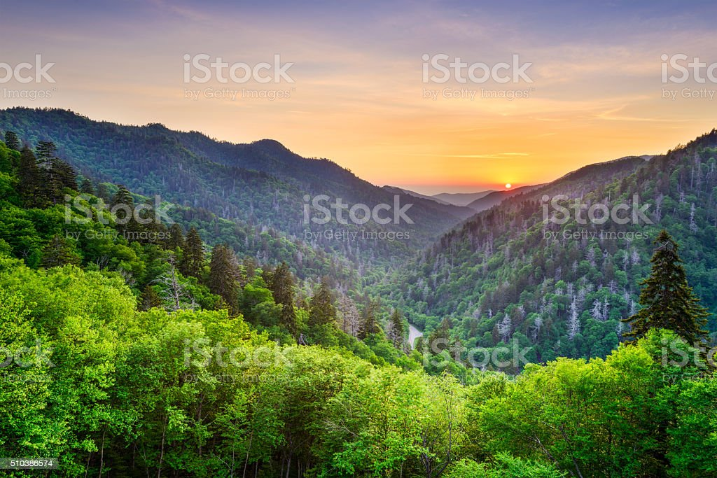 Newfound Gap in the Smoky Mountains royalty-free stock photo