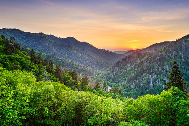 Newfound Gap in the Smoky Mountains Newfound Gap in the Smoky Mountains, Tennessee, USA. appalachia stock pictures, royalty-free photos & images